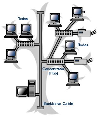 نقش شبکه در درمانگاه