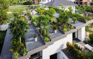 باغ بام