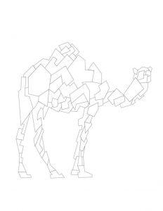 آنالیز خطی شتر