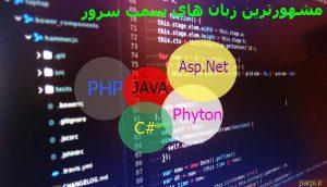 زبان برنامه نویسی سمت سرور