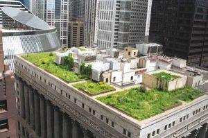 بام سبز-معماری پایدار